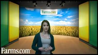 Farms.com Grain Markets Review:  Weather Concerns Drive Price Volatility.