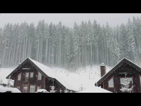 Blizzard Storm Sounds | Relaxing Winter Background Sounds |
