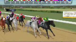 Digiturf Online Horse Racing