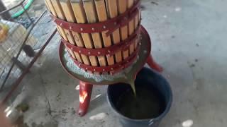 Домашнее сухое вино - этап приготовления