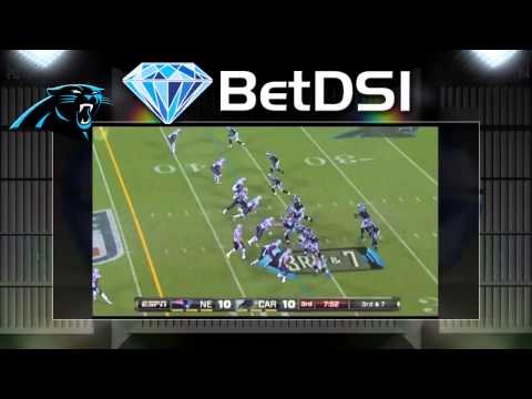 Carolina Panthers Odds | 2014 NFL Team Preview and Betting Predictions