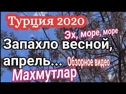 Турция 2020. Махмутлар и море, обзорное видео. Алания 2020