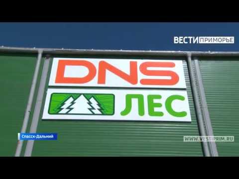 Первый на Дальнем Востоке завод по производству OSB-плит заработал в Спасске-Дальнем