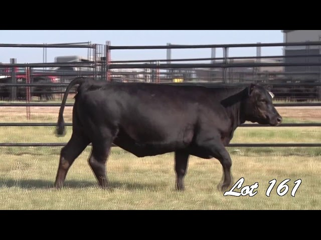 Pollard Farms Lot 161