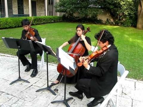 Yovel Strings-Iris