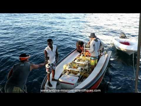 Mission Antsiva les îles Barrens 2017