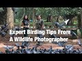 Expert Tips For Bird Watching In The Himalayas From A Wildlife Photographer
