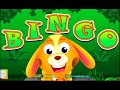 Bingo Dog Song - Nursery Rhymes and Songs For Children