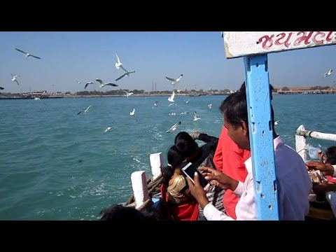 Amazing Nature Beauty of Dwarka to Bet Dwarka Sea Route on Water Boat