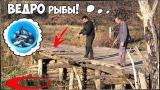 Наловил ВЕДРО ЁРШЕЙ с моста РЫБАЛКА на УЛЬТРАЛАЙТ и ЗИМНИЕ СНАСТИ