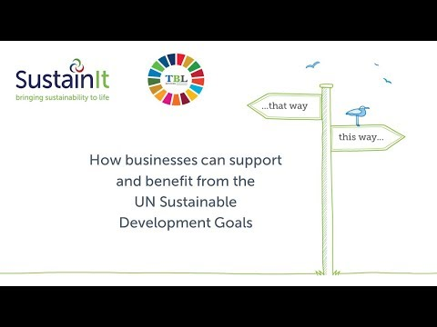 How businesses can support and benefit from the UN Sustainable Development Goals