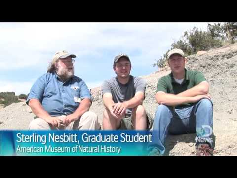 Human Fossil Hunters Cool Jobs  Discovery News