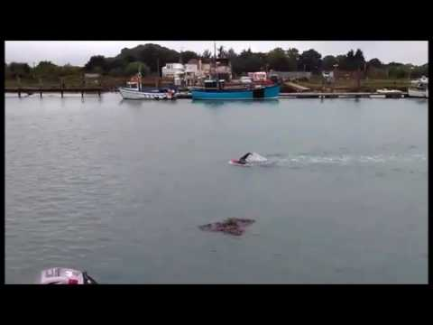 River Arun 3.8k swim race 2017