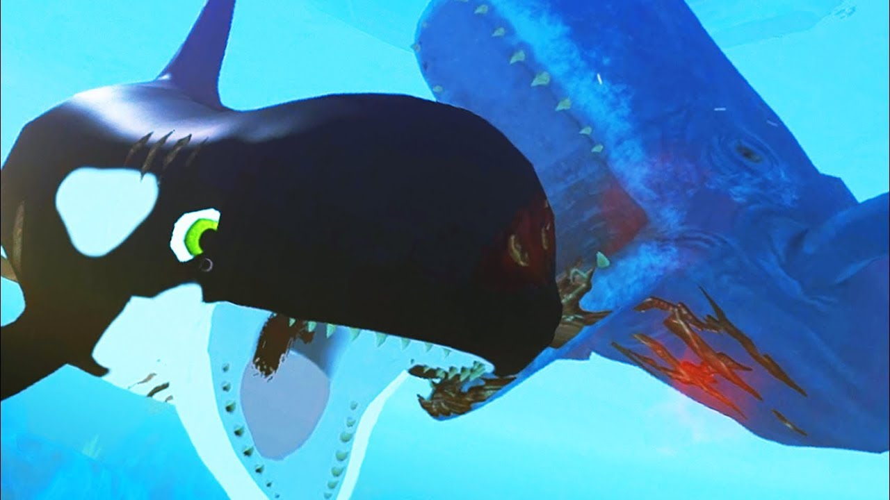 New killer whale vs new giant whale feed and grow fish for Fish and grow