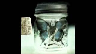 Saturnalia - Evans Blue