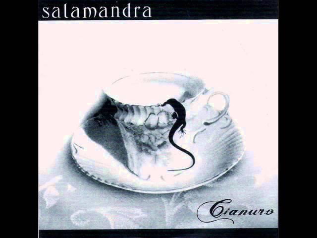 salamandra-esperar-diego-invernizzi