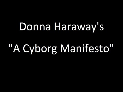 Donna Haraway's