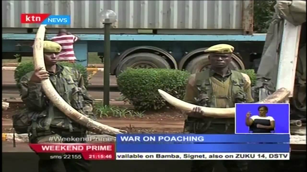 Wildlife Conservation Stakeholders launch an Online Campign to tackle poaching