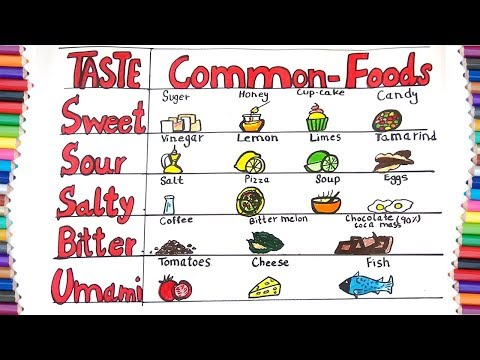 HOW TO DRAW BASIC TASTES FOOD FOR KIDS-HOW TO DRAW 5 BASIC TASTE
