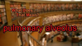 What does pulmonary alveolus mean?