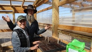 OFF GRID ~ this GREENHOUSE is AMAZING!