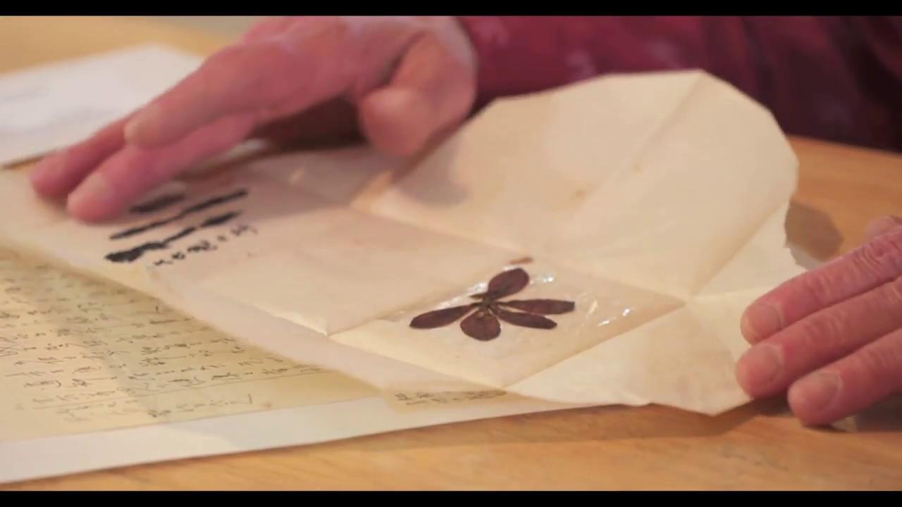 ドキュメンタリー映画「霧が晴れるとき」8分予告編映像