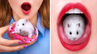 Как пронести животных в тюрьму Смешные трюки с животными