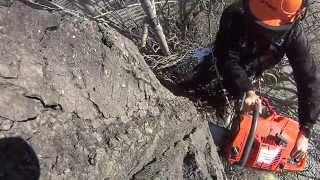 Спил деревьев Симферополь(, 2015-03-11T18:33:42.000Z)
