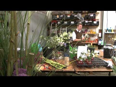 Informationsfilm zum Beruf Florist/Floristin