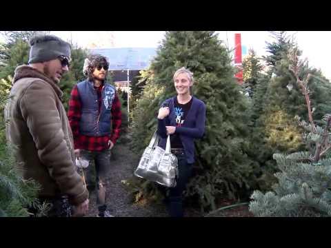Christmas Leto Tree
