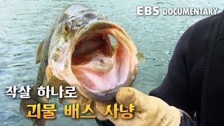 작살 하나로 생태계 포식자 괴물 배스 퇴치! 유해 동물 포획단