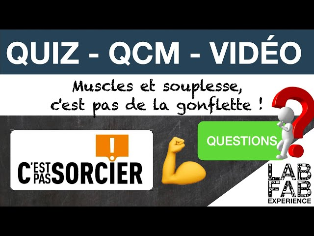 Quiz - QCM - Muscles et Souplesse, ce n'est pas de la gonflette - C'est pas sorcier - Questions