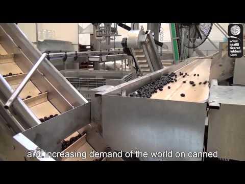orhanoğlu gıda  önal zeytin imalatı  buharkent