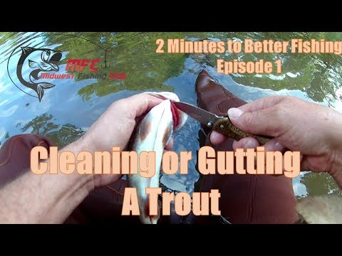 How to Clean or Gut a Trout