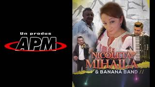 Descarca Nicoleta Mihaila - Se aud lautari cantand muzica populara 2021