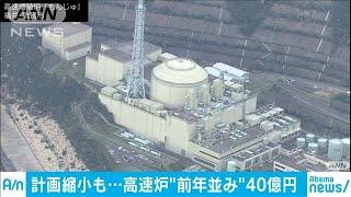 高速実証炉の開発予算 計画縮小でも前年並み40億円(19/12/21)