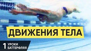 С ЧЕГО НАЧАТЬ ОБУЧЕНИЕ БАТТЕРФЛЯЮ? ДВИЖЕНИЯ ТЕЛОМ. УРОКИ БАТТЕРФЛЯЯ. УРОК 1 @ Swimmate.ru