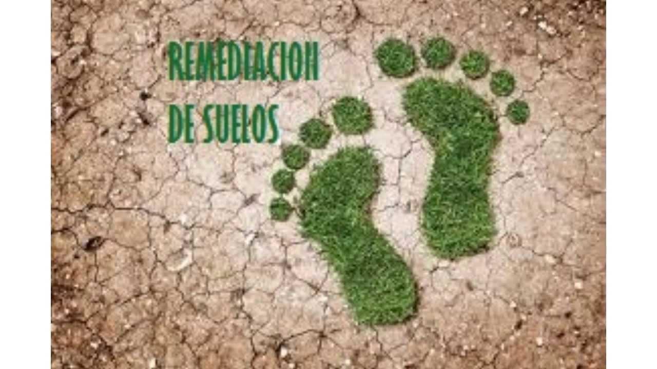 remediacion de suelos