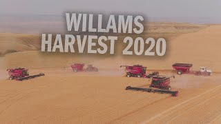 Williams Brothers Wheat Harvest 2020 - Aerial Reel