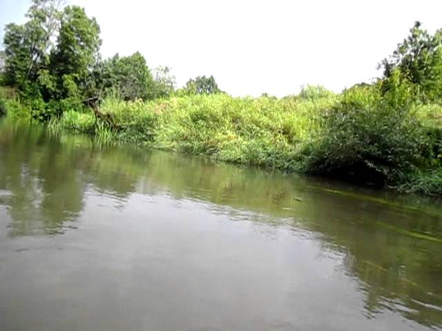 Мутная вода после дождя