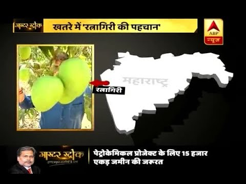 Master Stroke: Petrochemical project to replace Ratnagiri's famous Hapus mango farm land