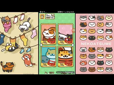Neko Atsume 100% Finished (All Cats, All Mementos Everything