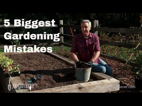 5 Biggest Gardening Mistakes