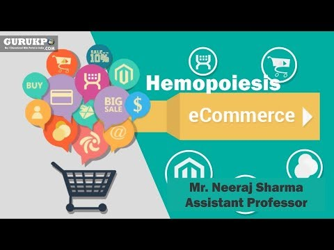 Introduction of E-Commerce(BCA)