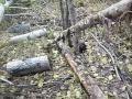 Петля на лося( a snare for moose).