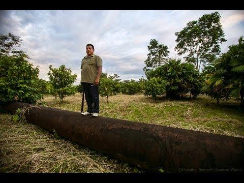 Servio Curipoma: Cacao Farmer from Ecuadorian Amazon vs. Chevron
