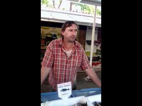 I love Croatia - Brac - Supetar - Fish Market - Đani