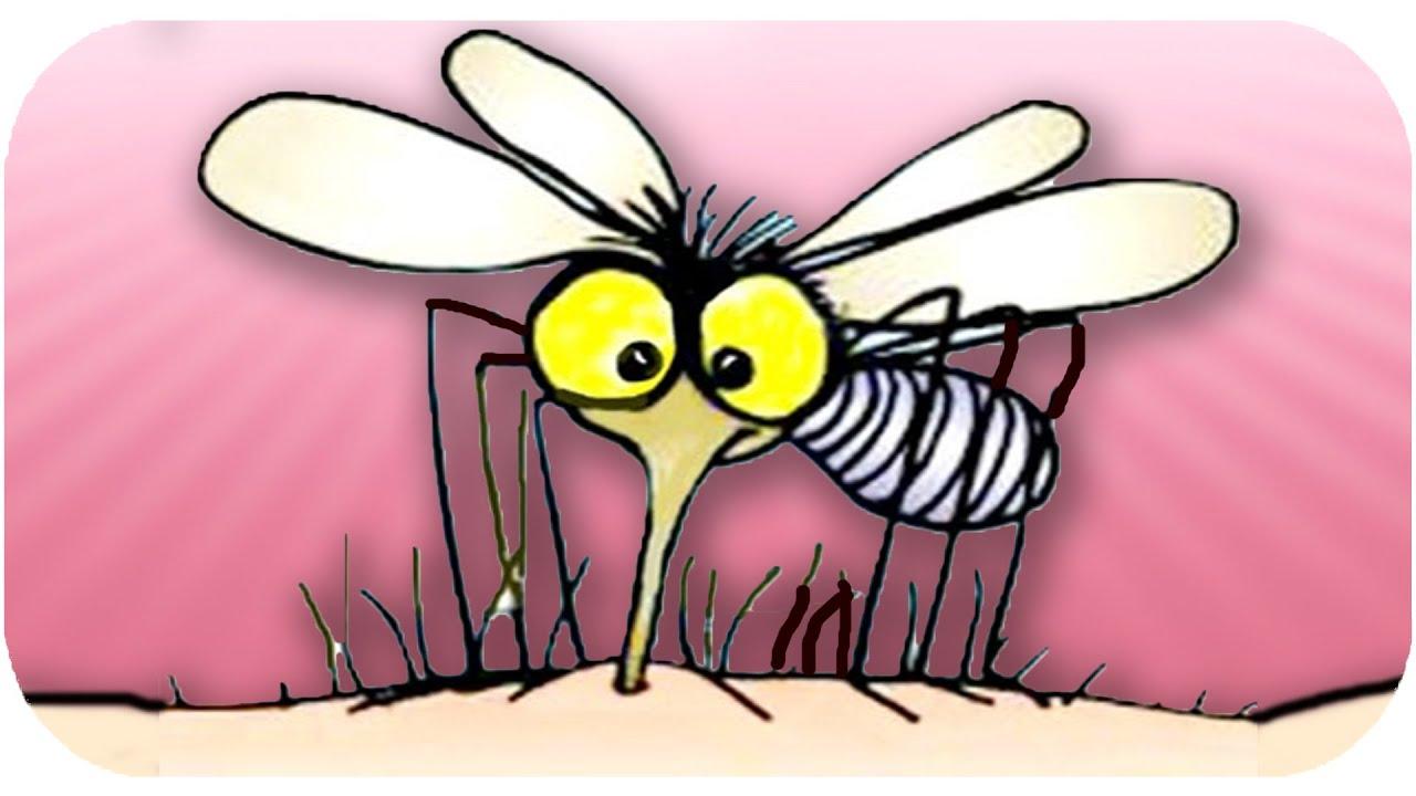 Sivrisineklerden kurtulmanın doğal formülü