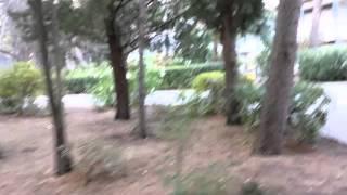 Baško Polje Camp