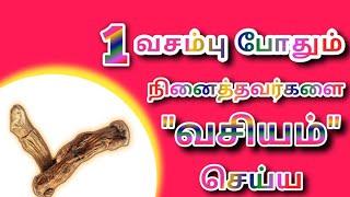 ஒரு வசம்பு போதும் நினைத்தவர்களை வசியம் செய்ய|Vasambu Vasiyam|Vasiyam|வசியம்